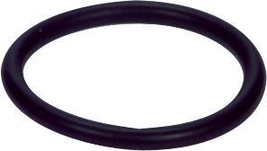 313 G O-Ring